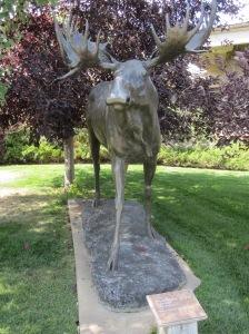 Bronze Moose