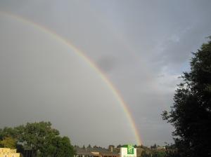 Cody Rainbow