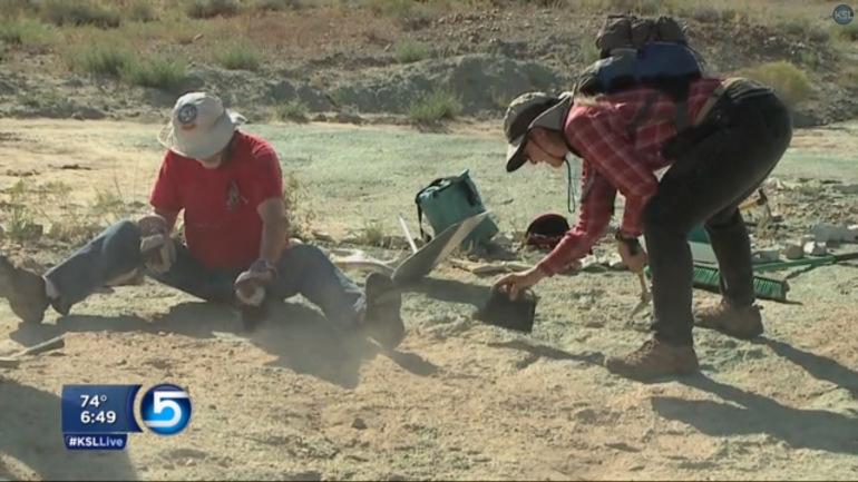 125-million-year-old-dinosaur-tracks-footprint1